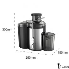 Stainless Steel Electric Juice Extractor For Home 220V