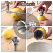 Stainless Steel Manual Juicers