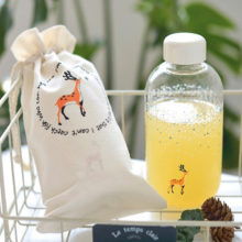 Fresh Snow with Animals Pattern Handmade Glass Water Bottle with Storage Bag Cute Ice Morning Glass Bottle SH174-112